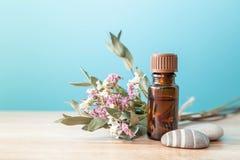 Butelka aromatyczny olej obrazy stock