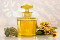 Butelka esencja aromatyczny olej Obraz Royalty Free