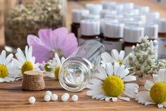 Butelka homeopatyczne pigułki z chamomile i innymi ziele obraz royalty free