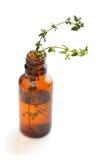 Butelka istotny olej z ziele tymiankowymi Obraz Stock