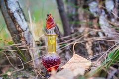 Butelka jad, jadowita kapsuła, Halloween Obrazy Stock