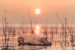 Butelka klingeryt w jeziorze zdjęcie stock