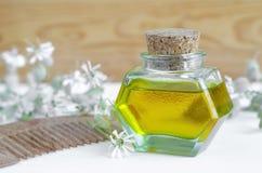 Butelka kosmetyka olej z kwiatami ekstrakt i drewniana włosy grępla dla naturalnej włosianej opieki Fotografia Stock