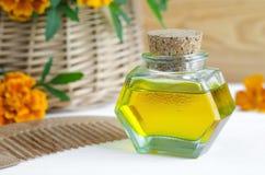 Butelka kosmetyka olej z nagietków kwiatami ekstrakty i drewnianą włosy gręplą (Tagetes kwitnie tincture, infuzję,) Zdjęcia Royalty Free