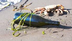 Butelka na oceanu wybrzeżu Obraz Stock