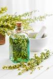 Butelka nieobecny lub tincture ziele estragonowi i leczniczy obraz stock