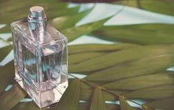 Butelka pachnidło na zielonym palmowym liściu obraz stock