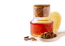 Butelka pierzgi tincture i drewniana łyżka pierzg granule Medyczna przygotowanie pszczoły pierzga Odizolowywający dalej Zdjęcie Royalty Free