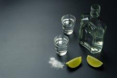 Butelka srebny tequila obrazy stock