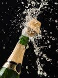 butelka szampan fotografia royalty free