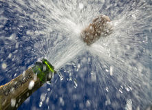 butelka szampan Obraz Royalty Free