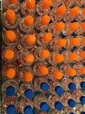 Butelka wierzchołków wzór Zdjęcia Stock