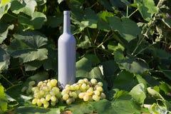 Butelka wino stojaki na tle zieleni liście winnica blisko wiązki winogrona, ocet naturalny napój, obraz royalty free