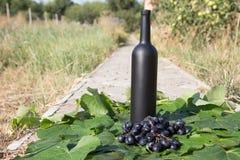 Butelka wino stojaki na tle zieleni liście winnica blisko wiązki winogrona, ocet naturalny napój, fotografia stock