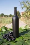 Butelka wino stojaki na tle zieleni liście winnica blisko wiązki winogrona, ocet naturalny napój, fotografia royalty free