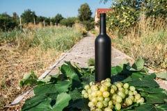 Butelka wino stojaki na tle zieleni liście winnica blisko wiązki winogrona, ocet naturalny napój, obrazy royalty free