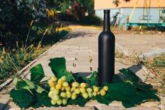Butelka wino stojaki przeciw zielonym liściom winnica ocet naturalny napój, intymni winnicy naturalny napój, intymny zdjęcia royalty free