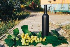 Butelka wino stojaki przeciw zielonym liściom winnica ocet naturalny napój, intymni winnicy naturalny napój, intymny fotografia stock
