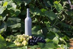 Butelka wino stojaki przeciw zielonym li?ciom winnica ocet naturalny nap?j, intymni winnicy naturalny nap?j, intymny fotografia stock
