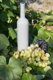 Butelka wino stojaki przeciw zielonym li?ciom winnica ocet naturalny nap?j, intymni winnicy naturalny nap?j, intymny fotografia royalty free