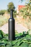 Butelka wino stojaki przeciw zielonym li?ciom winnica ocet naturalny nap?j, intymni winnicy naturalny nap?j, intymny obrazy royalty free