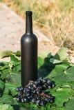 Butelka wino stojaki przeciw zielonym li?ciom winnica ocet naturalny nap?j, intymni winnicy naturalny nap?j, intymny zdjęcia stock