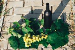 Butelka wino stojaki przeciw zielonym li?ciom winnica ocet naturalny nap?j, intymni winnicy Naturalny nap?j fotografia stock