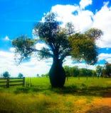 Butelki drzewo Obraz Royalty Free