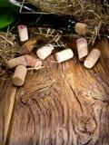 butelki korków wino Obrazy Stock