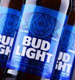 Butelki Pączkowy Lekki piwo Obrazy Royalty Free