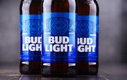 Butelki Pączkowy Lekki piwo Zdjęcia Stock