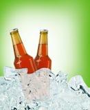Butelki piwo na lodzie Obrazy Stock