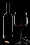 butelki szkła zaświecający obręcza wino Zdjęcie Royalty Free