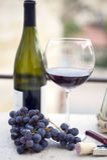 butelki szkła winogron wino Obrazy Stock