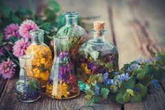 Butelki tincture lub infuzja zdrowi ziele, leczniczy ziele Obrazy Royalty Free