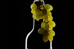 butelki wiązki winogron wino Obrazy Stock