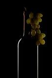 butelki wiązki winogron wino Zdjęcia Stock