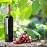 butelki wiązki winogron wino Zdjęcie Stock