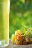 butelki wino zdjęcie stock