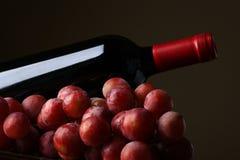 butelki winogron wino Obrazy Stock