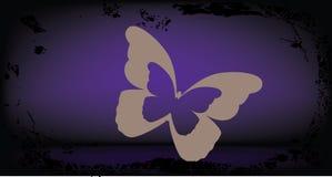 Buterfly auf grunge Hintergrund Stockfotografie