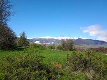 Butiful mountine w Armenia Lori Zdjęcie Royalty Free