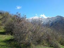 Butiful mountine w Armenia Lori Fotografia Stock