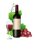 Butilka with wine glass and vine Stock Photography