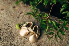 Butins de bébé et un fruit de grenade Images libres de droits
