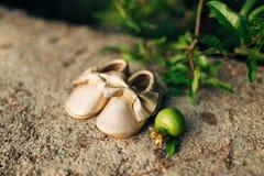 Butins de bébé et un fruit de grenade Image libre de droits