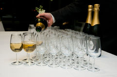 Free Butler And Glasses Stock Photography - 23136712
