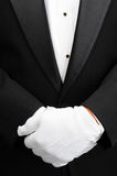 Butler with hands in front of body. Closeup of a butler with his white gloved hands in front of his body. Man is wearing a tuxedo showing only his torso in stock image