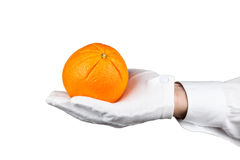 Butler holding an orange Royalty Free Stock Images