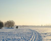 Butovo Moscow winter and couple walking in park royalty free stock photos